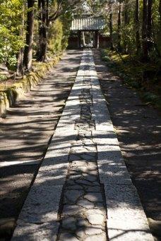 いかにも鎌倉の道という風情。