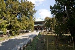 三門をぬけて、御本尊が安置された仏殿へと向かいます。参道には開山の蘭渓道隆手植えと伝わる柏槙(ビャクシン)が並びます。