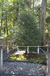 鶴岡八幡宮の元宮、由比若宮(由比ケ浜)をここからお参りするための場所。