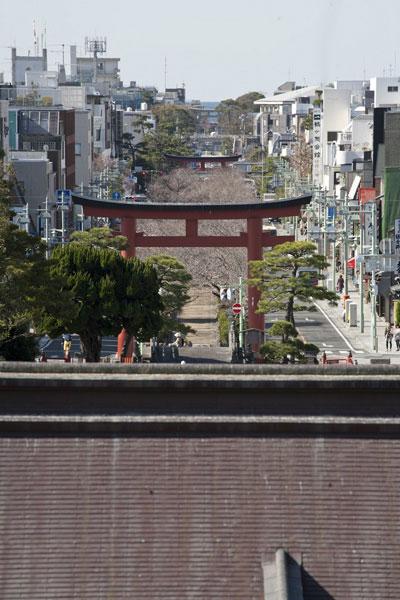 本宮からは由比ケ浜まで一直線にのびる参道が見渡せます。手前から三ノ鳥居、二ノ鳥居、一ノ鳥居と続きます。