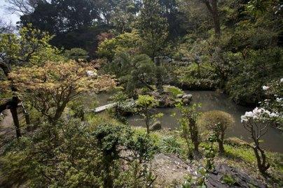 居心地のよい池です。