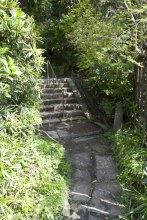 石段を登っていきます。