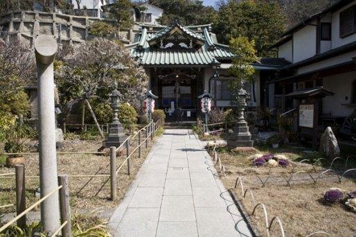 常栄寺の梅。どこかほっとする清々しさがある境内。左手に数本の梅があります。