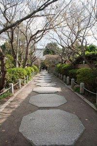 道路から続く参道。八角形の敷石が特徴的です。