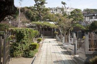 本成寺の境内の様子。