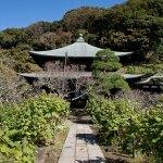 瑞泉寺本堂。紅葉ヶや谷と瑞泉寺の絶妙な風情がたまりません。