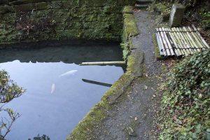 いわれはあまりないようですが、風情はとてもよいです。鯉もキレイな水でさぞ気持ちよいことでしょう。