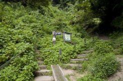 階段を登ると道が左右にわかれ案内図と標識が見えてきます。大仏切通しは右手の階段をいきます。