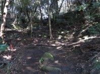 天園ハイキングコース瑞泉寺〜獅子舞上合流地点間。貝吹き地藏のある平場。