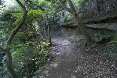 〔地図⑭〕左側が崖になっています。