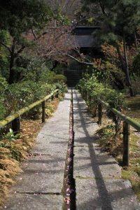 妙法寺、苔の石段へと向かいます。さらに静けさが増します。
