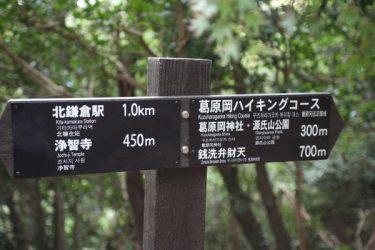 葛原岡・大仏ハイキングコース。随所の案内板があり、迷うことはありません。