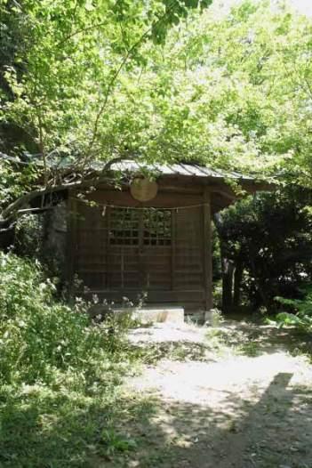 青梅聖天社。小さな御堂があります。