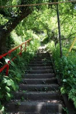 青梅聖天社。樹々に囲まれた階段を登ります。
