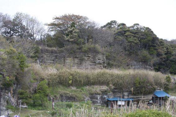 名越切通し。名物の大切岸。法性寺口付近にあります。北条氏が三浦氏に対する防御を考えたものと考えられていましたが、石切場跡ともいわれています。