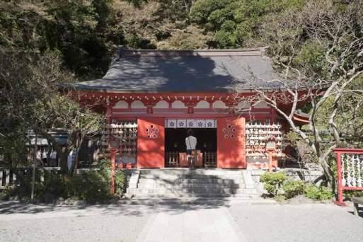 〈王道〉金沢街道をゆく。荏柄天神社は菅原道真を祀る学問の神様。鎌倉一早咲きの寒紅梅があり、1月末から咲きます。