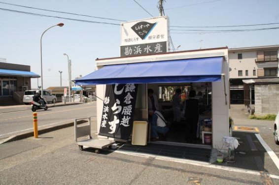 しらすやの駐車場には勘浜水産の直営所があります。生しらす(大1,000円、小500円)、ひじき500円、釜揚げしらす(大1,000、小550円)、塩わかめ500円、あかもく500円など腰越の地物が並びます。