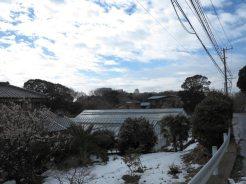和田城址。石碑周辺の風景。三浦半島は海に恵まれ、農業も盛んな地域です。