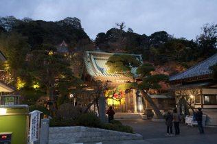 鎌倉の七福神めぐり。大黒天が祀られている長谷寺。秋の紅葉ライトアップは長谷寺ならではの圧倒的な美しさです。