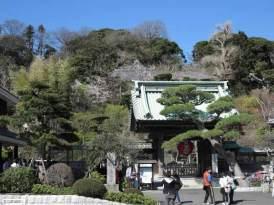 春の長谷寺。陽光と桜、包まれるような温かさ。