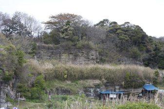 大切岸。北条氏が最大のライバルであった三浦半島の雄族三浦一族に対するために造ったとも、石切場跡ともいわれています。
