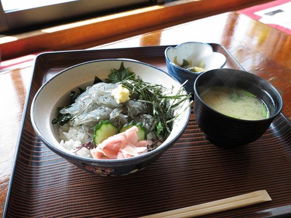 江ノ島、魚見亭の生しらす丼定食(1,000円)。しらすは生と釜揚げが選べます。しらすが少なめに感じましたが、素晴らしい眺望をプラスしてよしとします。