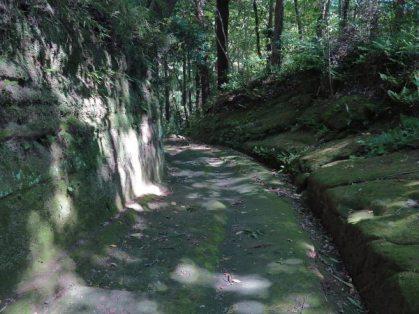 神武寺表参道。随所に切通しがあります。