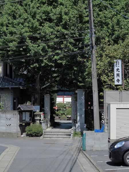 光照寺。立派な銀杏があります。