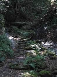 右に進むと、いかにも古道といった趣のある道です。石が敷かれ、沢が流れます。