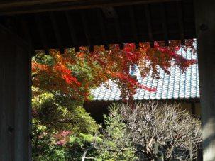 建長寺正統院の紅葉。