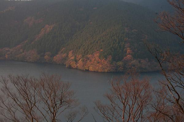 遠目にみると湖畔の紅葉が見事な朝靄の芦ノ湖。