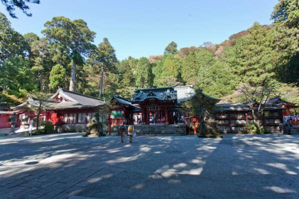 箱根神社の本殿。来る度に清々しい気分になります。
