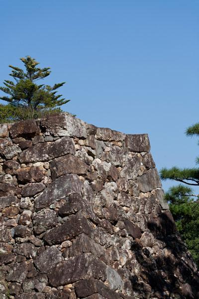 高知城の石垣。