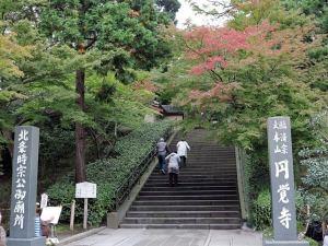 昨年、平成27年(2015年)11月19日の円覚寺。