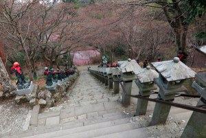 大山寺の本堂から参道をのぞむ。