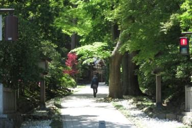 彌彦神社参道。