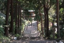 伊豆山神社、参道。