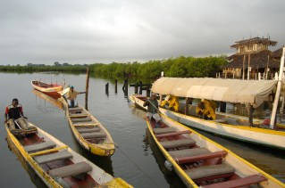 GAMBIA. Canoas para el avistamiento de aves en Lamin Lodge.