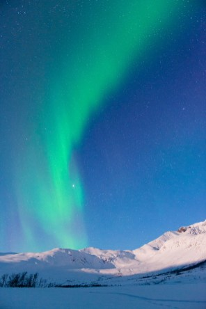 hurtigruten-noruega-invierno_24