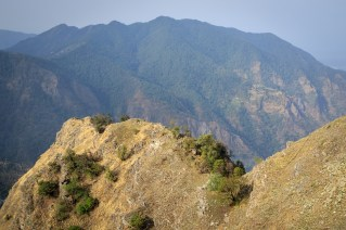 Rocky terrain dominated by scrub. Pangot. Nainital district. Uttarakhand. India.