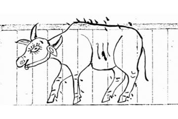 漫談動物去勢的歷史
