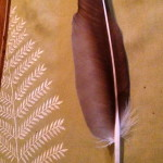 Bird of Prey Quill