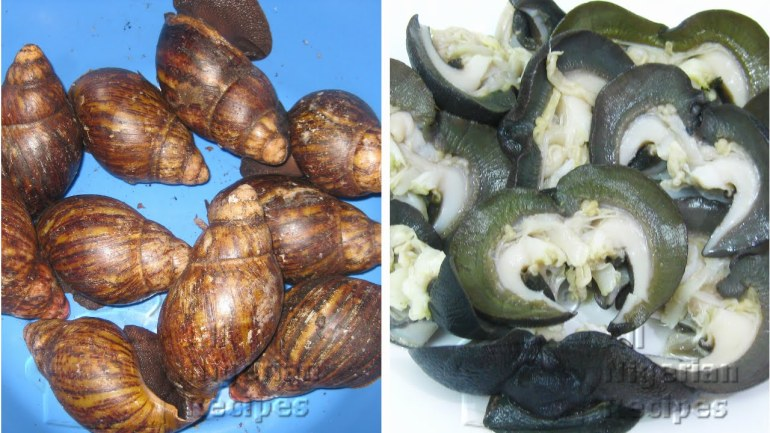 Kamdora Kitchen – To Cook The Snail, You Have To Clean The Snail!