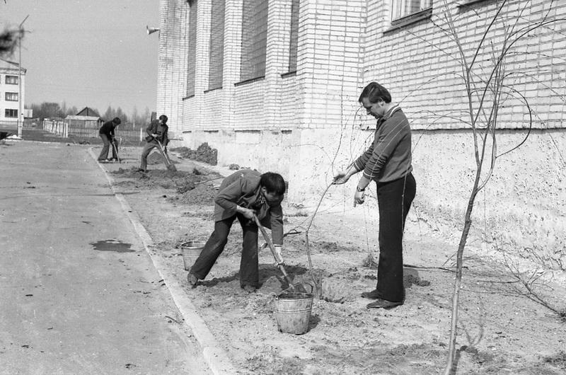 Работы по благоустройству участка, 1976 год