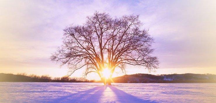 wintersolstice2014jyotishvedicastrology
