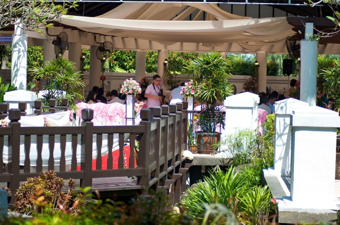 A Sunday Wedding _DSC8361