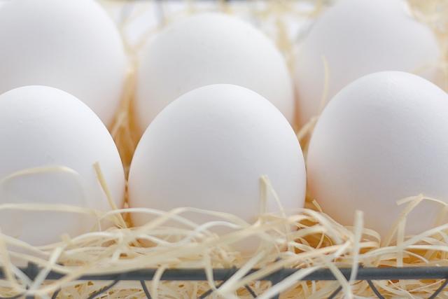 神饌(鶏卵)