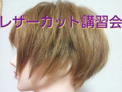 最上もが 髪型 切り方2《解説》ヘアスタイル ショートレイヤーボブ 人気の芸能人ヘアカタログ