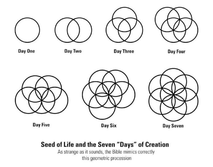 Seed of Life Days of Creation