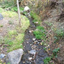 Peterson Creek Park 8